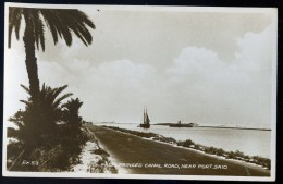 Cpa Carte Photo Egypte Palm Fringed Canal Road , Near Port Said  AG15 9 - Port Said