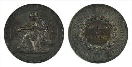 AG00032 EXPOSITION DE LA BRASSERIE - MEMBRE DU CONGRES - VERSAILLES  - 1881 (Ag25.1g) Femme Au Travail Au Revers - Professionnels / De Société