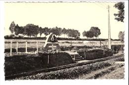 """Libin-Maissin-+/-1950-Route De Poix-Chapelle N.D. Du Mont Carmel-Voie Du Tram-Ed.""""Arduenna""""-Maison Debehogne, Libin - Libin"""