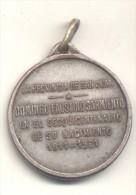 DOMINGO FAUSTINO SARMIENTO SESQUICENTENARIO DE SU NACIMIENTO 1811-1961 LA PROVINCIA DE SAN JUAN MEDALLA ORIGINAL - Professionals / Firms
