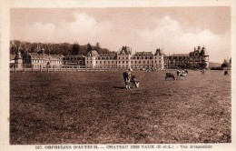 28 Chateau Des Vaux Orphelins D'Auteuil Vue D'ensemble Animée Vaches - Francia