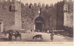 Palestina--Jerusalem--Puerta De Damasco-- - Palestina