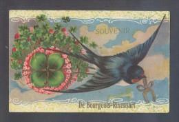 Ilustrador Desconocido *Souvenir De Bourgeois-Rixensart* Superficie En Relieve. Circulada. - Pájaros