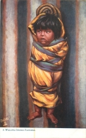 INDIENS  A WALAPAI INDIAN  PAPOOSE - Native Americans