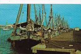 Aruba Three Schooners Tied Up At Oranjestad's Harbor - Aruba