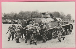 Militaire - Photographie - Véhicule De Combat D'Infanterie, Blindé AMX 13 - Guerre, Militaire