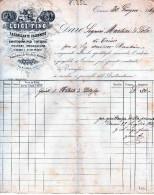 ANTICARICEVUTA- -DITTA LUIGI FINO-FABBRICANTE DI ALBUMINE-TORINO-30-6-1869 - Italia