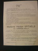 Faire Part De Deces Hector Spitaels Nee Josephine Bailly Oeudeghien 1879 Lembecq 1932 - Avvisi Di Necrologio