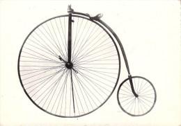 Cyclisme - Bicycle Rudge Rayons Tangents Caoutchoucs Pleins  (vélo Bicyclette  Cycle ) *PRIX FIXE - Cycling