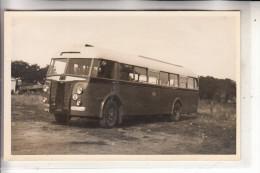 NL - LIMBURG - VENLO, Omnibus, Crossley, 1951, Photo In AK-Grösse - Venlo