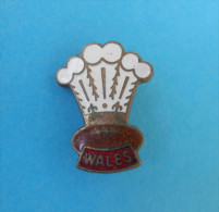 WELSH RUGBY FEDERATION - Vintage Enamel Sport Union Association Pin Badge Anstecknadel Distintivo Wales British - Rugby