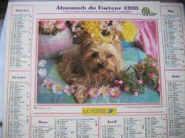 Almanach Du Facteur 1993 Département 68 En Très Bon état. Document PTT. Editions Oller - Calendarios