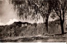 POSTAL DE SAN HILARIO SACALM DE VILLAVECHIA  (ED. BOSCH) (GIRONA-GERONA) - Gerona