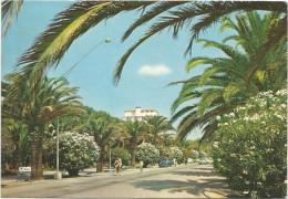 A3198 San Benedetto Del Tronto (Ascoli Piceno) - Lungomare - Auto Cars Voitures / Viaggiata 1971 - Italia