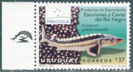 Uruguay 2009. Michel #3069 MNH/Luxe. Fishes. (TS18) - Vissen