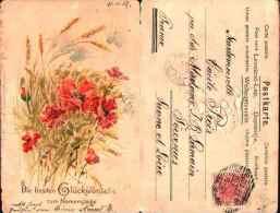 Fleurs Pavot Coquelicot - Glückwünsche Zum Namenstage Blé (1902) Gaufrée - Botanik