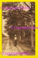 LIERMAN Te OUD-TURNHOUT * Mooie Animatie HEIDE LANDSCHAP DE LIEREMAN 3881 - Oud-Turnhout