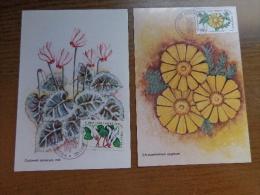 8 X Maximumkaart, Kibris Turk Federe Devleti Postalari  --> Unwritten (with Nice Stamp At Front) - Turchia