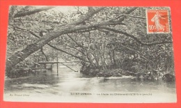 Saint Junien - la glane au ch�telard - l'arbre pench� ------ 282