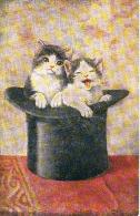 Chats Fantaisie  2 Chats Dans Un Chapeau   Cpa - Gatti