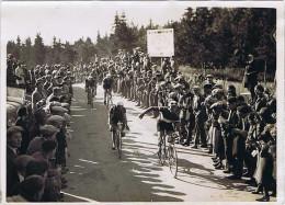 (74) Photo Meurisse 1932 ? Tour De France Cycliste Étape Évian-Belfort Col De La Faucille CAMUSSO (Italie) Benoît FAURE - Cyclisme