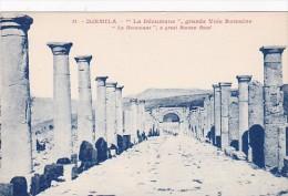 Algeria Djemila La Decumane grande Voie Romaine