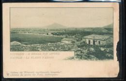 Grece -- Nauplie --- La Plaine D'Argos - Grecia