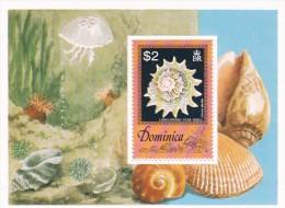 Dominica hb 41