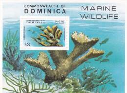 Dominica hb 55