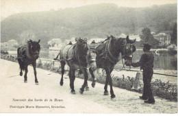 anseremme souvenir des bords de la meuse attelage de chevaux haleurs!! marcovici 1907 vers rochefort