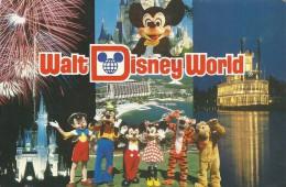--WALT DISNEY WORLD --ORLANDO--FLORIDE--CARTE ECRITE AU VERSO 17  JUILL 1987--MANQUE LE TIMBRE-- - Orlando