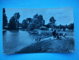 Réf: 62-1-46.    DORDIVES    Camping Et Bords Du Loing  ( Cette Carte N'est Pas Bleue, Ton Blanc Et Noir, Glacée) - Dordives