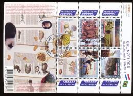 Netherlands Sheet 2009 Netherlands - Brazil Michel 2674 - 2679 (Block 119) - Blocks & Sheetlets