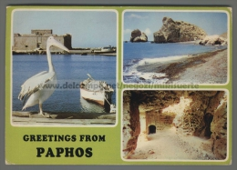 U3120 CYPRUS GREETINGS FROM PAPHOS APHRODITE PELICAN VG STAMP EUROPA CEPT (tur) - Cipro