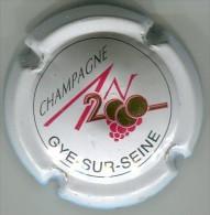 CAPSULE-613-CHAMPAGNE 2000-GYE SUR SEINE-blanc écr. Noir - Other