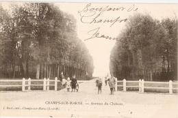 CHAMPS Sur Marne - Avenue Du Château - Other Municipalities
