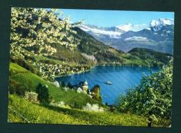 SWITZERLAND  -  Vitznau  Used Postcard As Scans - LU Lucerne