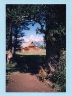 WYOMING - Tetons Bars - Etats-Unis