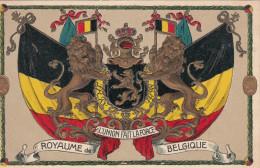 Postkaart, Carte Postale, Royaume De Belgique, L´union Fait La Force; Reliëfkaart, Carte En Reliëf (pk18193) - Andere