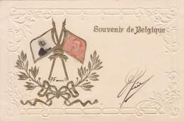 Postkaart, Carte Postale, Souvenir De Belgique, Reliëfkaart, Carte Reliëf (pk18195) - Andere