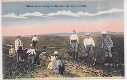 SYRIE - Alentours Du Camp Du Muséifré (septembre 1925) - Syrie