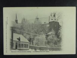 Souvenir D'´Ecaussinnes-Lalaing Le Château-fort - Ecaussinnes