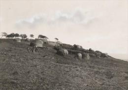 Attilio Gatti Expedition Africaine Village Zoulou Ancienne Photo 1934 - Africa