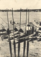 Afrique Riviere Barques Pagaies Photo 1950