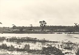 Senegal Region De Dakar Paysage Ancienne Photo 1935 - Africa