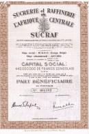 Part Bénéficiaire -  Sucrerie Et Raffinerie De L'Afrique Centrale - Siège Social Bukavu - Afrique