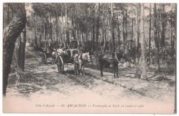 Gironde 33 - ARCACHON Promenade En Foret En Voiture à Sable Belle Animation Caleche Attelage Cheval Ane Arbre Foret - Arcachon