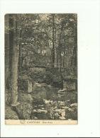 Casteau Sous Bois - Soignies