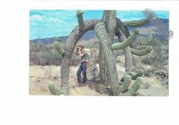 Cpm - Saguaros Fantastic Shapes - Cactus Géant Homme Appareil Photo - 1964 - - Unclassified