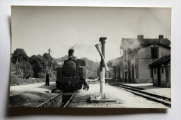 Photo Inspection Locomotive En Gare, Manche à Eau Collection Schnabel - Gares - Avec Trains